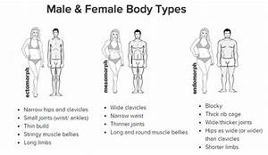 Do You Know What Your Body Type Is   U2013 Fitsnippets
