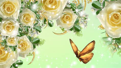 and yellow curtains beautiful yellow roses hd wallpapers free downloads