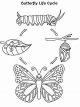 Cycle Butterfly Coloring Pages Printable Monarch Children sketch template