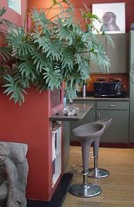 Rouge Brique Avec Quelle Couleur : cuisine grise et rouge pour la peinture avec touches de vert ~ Melissatoandfro.com Idées de Décoration