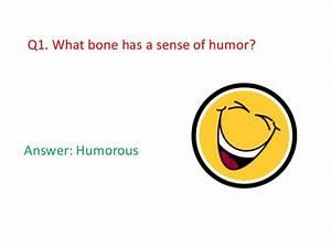 Swiss Sense Test : swiss sense of humor ~ Watch28wear.com Haus und Dekorationen