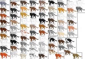 warrior cats names the cats of thunderclan by momma ran on deviantart