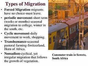 Migration pdf