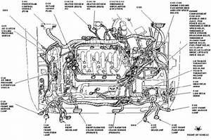 2004 Ford Focus Engine Diagram  U2013 Best Diagram Collection