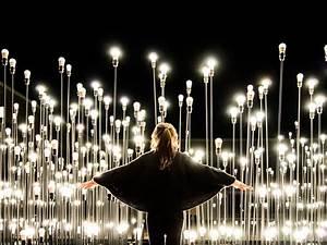 Led lighting art ledscape artistic lighting for Ledscape a lightbulb landscape in portugal