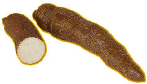comment cuisiner manioc frites de manioc mimi végétale