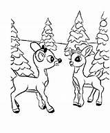 Deer Coloring Drawing Pages Outline Reindeer Template Animal Popular Getdrawings Library Clipart Coloringhome sketch template