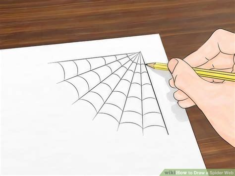 spider web drawing with spider 3 ways to draw a spider web wikihow