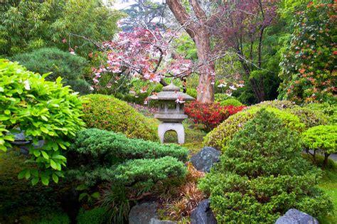 sf botanical garden 55 stunning botanical gardens seidel miami real estate
