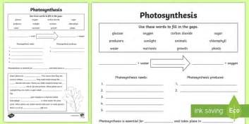 Photosynthesis Worksheet  Photosynthesis, Plants, Growth