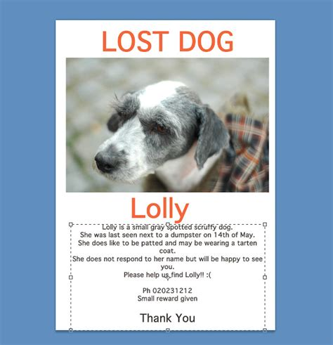 How To Make Lost Pet Signs 12 Steps (with Pictures)  Wikihow. Life Coaching Agreement Template. Avery 5392 Indesign Template. New Year Cover Photos For Facebook. Pocket Folder Template Indesign. Graduation Gift Ideas For Girlfriend. Tri Fold Invitations Template. Free Loan Agreement Template. Good Road Service Invoice Template