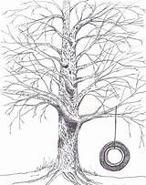 Swing Drawing Tree Sketch Tire Line Drawings Coloring Trees Draw Colouring Sketches Getdrawings Tattoo Pages Paintingvalley Wanted Always Google sketch template