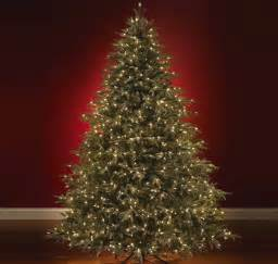 vignette design christmas trees and greens faux real or real fir