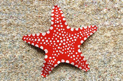 paper plate starfish kids crafts fun craft ideas