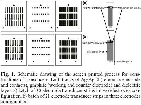 behavior     electrode configuration   mediators  working electrode