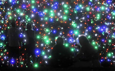 many places to see lights in ta bay area