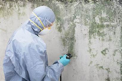 Mold Remediation Removal Water Damage Remove Caused