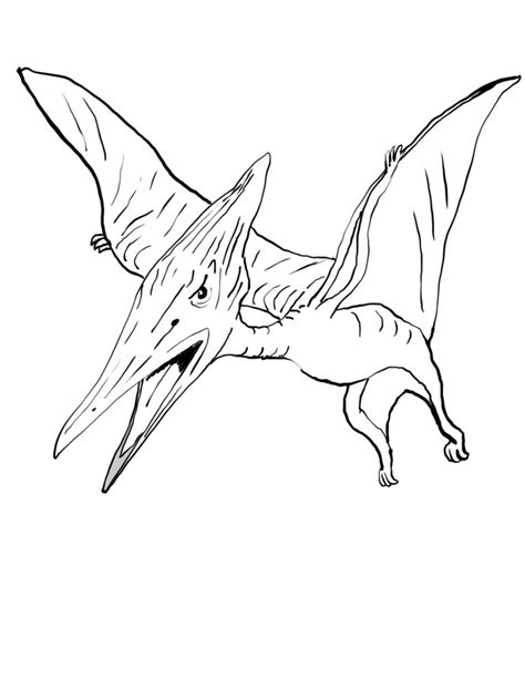 pterodactyl coloring pages  dinosaur coloring books