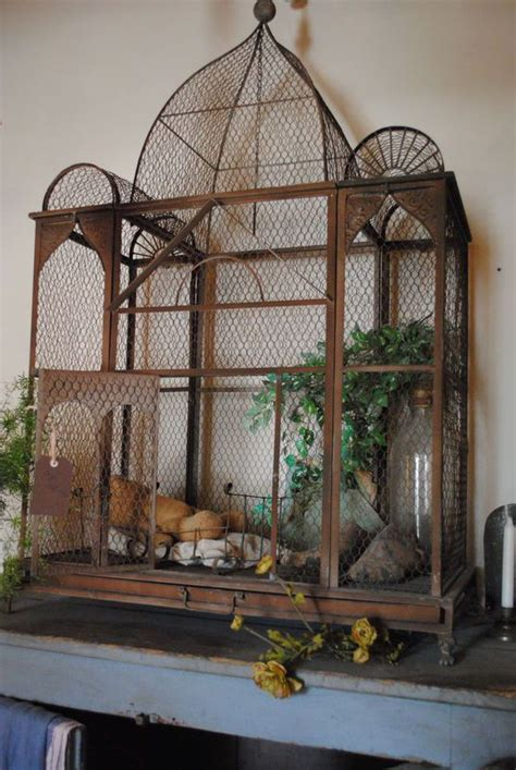 1000 images about beautiful bird cages on