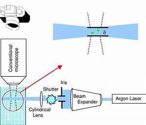 Thin Light Sheet Microscopy  Tlsm   Schematic Diagram