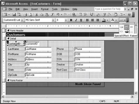 applying special effects ms access
