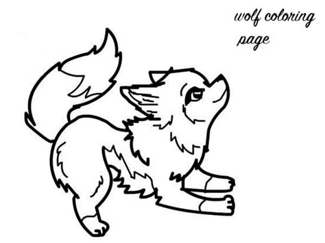 Snow Leopard Clipart Colouring Page