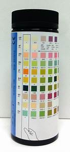 Urine Reagent Test Strips 10sg 10 Sg