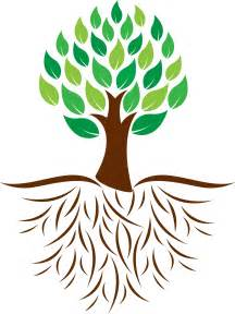 trees with roots clipart best