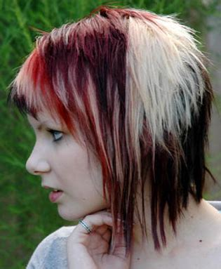 calico cat hairstyle   hair