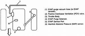 Vacuum Lines Diagram For 2000 Blazer 4x4