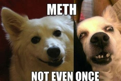 Meth Not Even Once Meme - really funny memes meth not even once