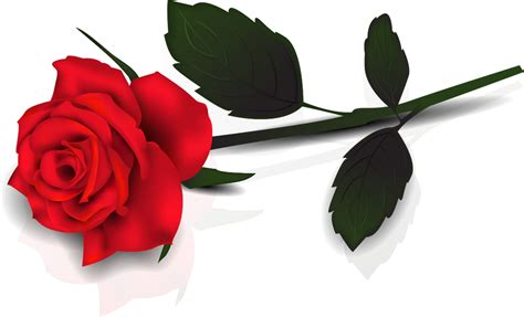 Beautiful Roses Clipart Image Png Download Iphone 3 Trade In Apple 5s A1453 Version 3gs Specs How To Put Sim Card Upgrade Battery Case Activation Lock