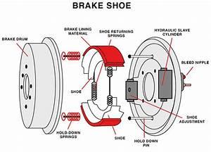 Brake Pads Vs  Brake Shoes