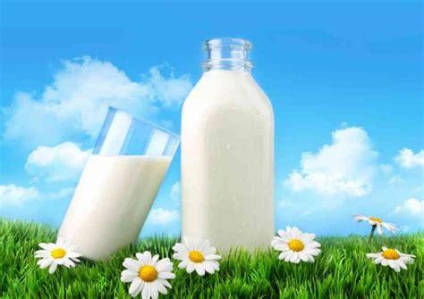 susu murni vs susu low fat mana yang lebih bagus