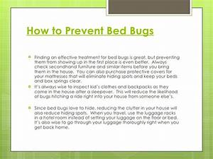 the truth about bed bugs With bed bug safety