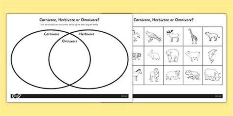 venn diagram worksheet ks omnivore carnivore  herbivore
