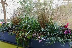 Balkonkästen Winterhart Bepflanzen : von einem herbstlichen zu einem winterlichen balkonkasten ~ Lizthompson.info Haus und Dekorationen