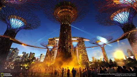 nation   supertrees national geographic