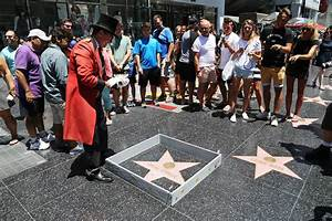 Artist Built a Wall Around Donald Trump's Walk of Fame Star