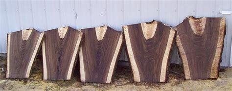 cutting  storing  walnut tree woodworking talk