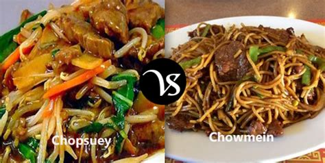 what is the difference between chow mein and lo mein the gallery for gt difference between lo mein and chow mein