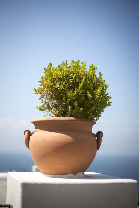 is pot in italy clay pot in positano italy entouriste