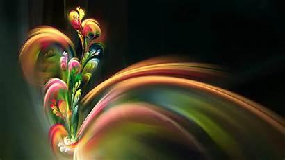 Desktop Wallpapers Flower Backgrounds Itl Flowers Cat