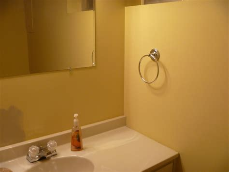 impressive paint color schemes for bathrooms cool design