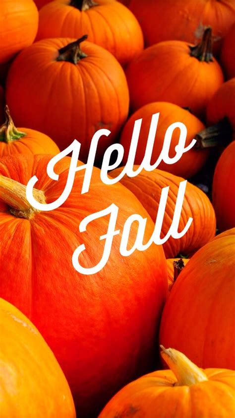 Fall Wallpaper Iphone Pumpkins by Fall Iphone Wallpaper Backgrounds Iphone Wallpaper