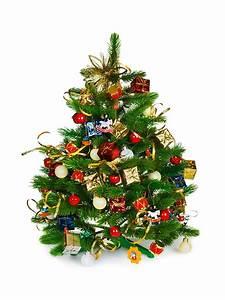 Geschmückter Weihnachtsbaum Fotos : so geht s den wirklich perfekten weihnachtsbaum finden ~ Articles-book.com Haus und Dekorationen