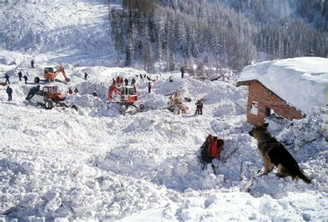 chamonix mont blanc avalanche de montroc le conseil d 201 tat a tranch 233
