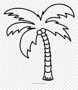 Palm Tree Coloring Line Clipart Outline Palmera Colorear Dibujo Ultra Pinclipart Dlf Pt Kindpng Pngkit sketch template