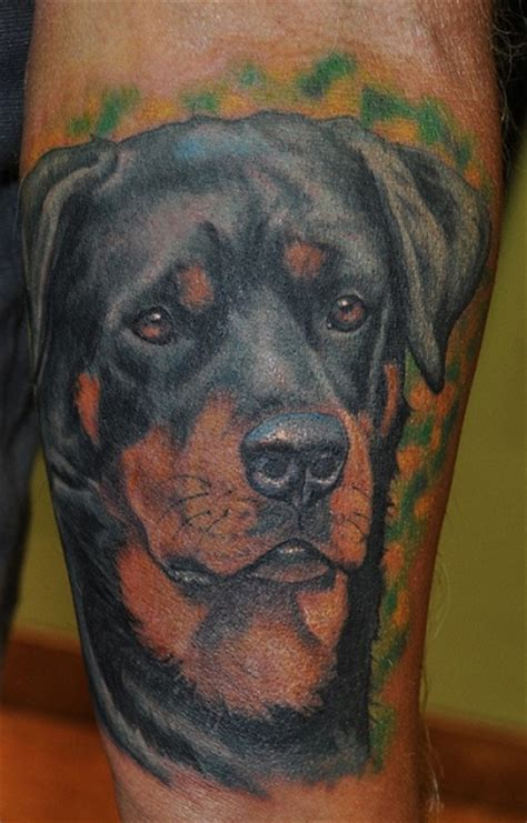 The  Coolest Rottweiler Tattoo Designs In The World