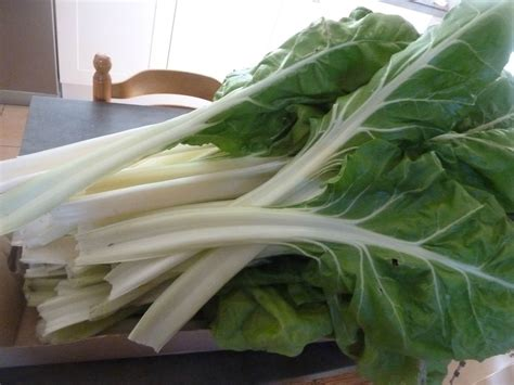 cuisiner cardes bettes blanches potager